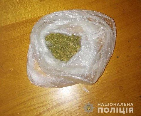 Полиция Великого Березного обнаружила у закарпатца марихуану