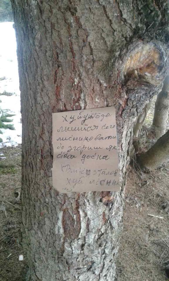Репутацію Тячівського лісгоспу намагалися очорнити!