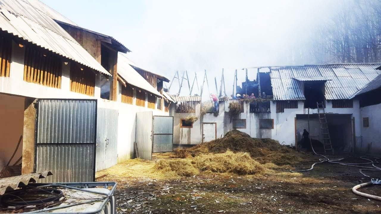 Вогнеборці Закарпаття ліквідували пожежу на території монастиря