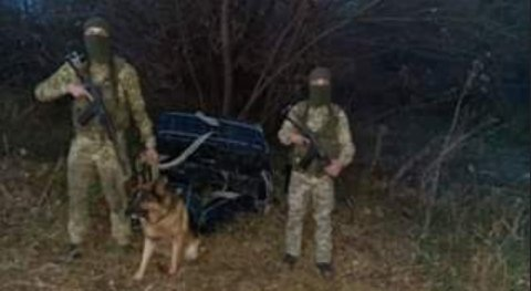 """У Карпатах прикордонний пес вивів на слід 18-річного """"товариша"""" контрабандистів"""