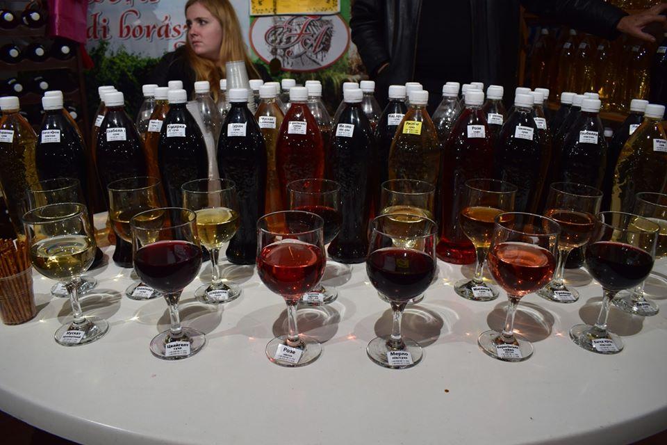 В Ужгороді пробують молоде вино та смакують сирами, м'ясом, рибою та устрицями