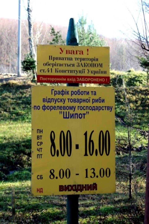 Форелеве царство та «хижа» у лісі: що цікавого для туристів є у закарпатській Тур'я-Поляні