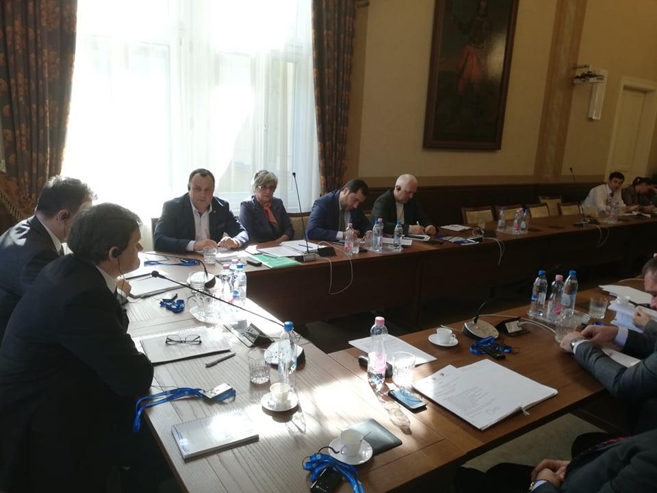Європейське об'єднання ТИСА цьогоріч зосередиться на реалізації спільних проектів у Солотвино та на Берегівщині