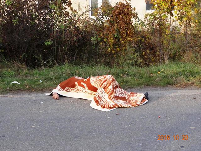 В Иршавском районе в результате ДТП погиб велосипедист