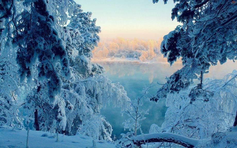 В сети опубликовали фото зимних Карпат