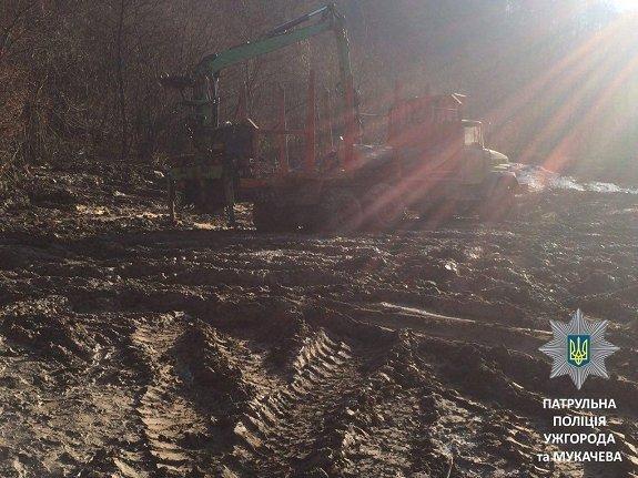 """На автодороге """"Киев-Чоп"""" обнаружили 40 кубов срезанного леса"""