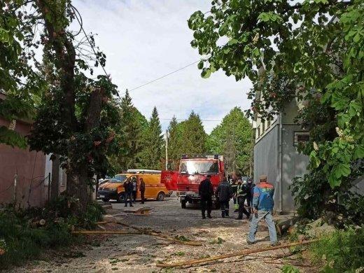 Порывы ветра стали причиной ЧП в Ужгороде