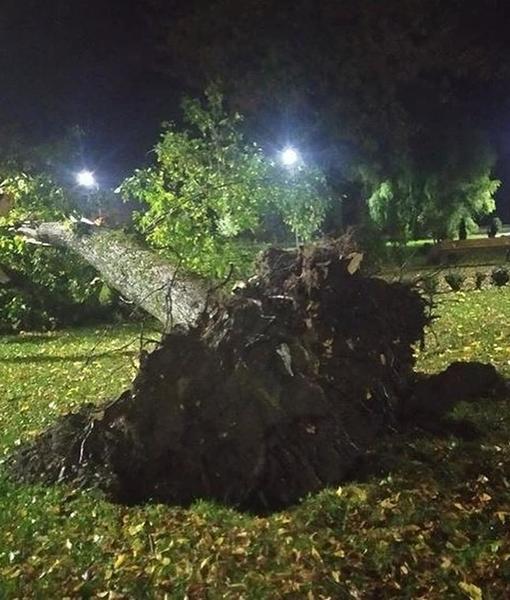 Всё летало: В Закарпатье прошелся сильный ураган