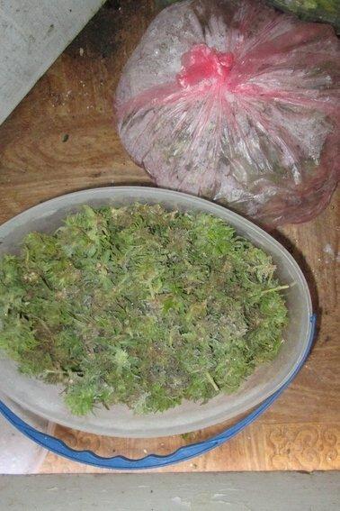 Закарпатська поліція повідомляє про наркотики
