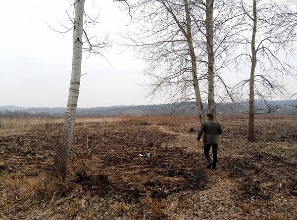 В Закарпатье горит уникальная Долина нарциссов