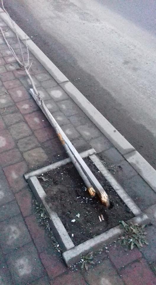 """Полный беспредел: В Закарпатье разыскивают недоумков на """"Жигулях"""", которые устроили ДТП"""