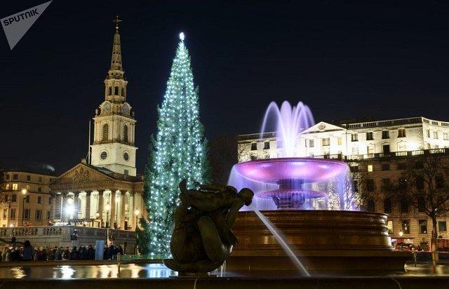 Рождественская ель на Трафальгарской площади в Лондоне.
