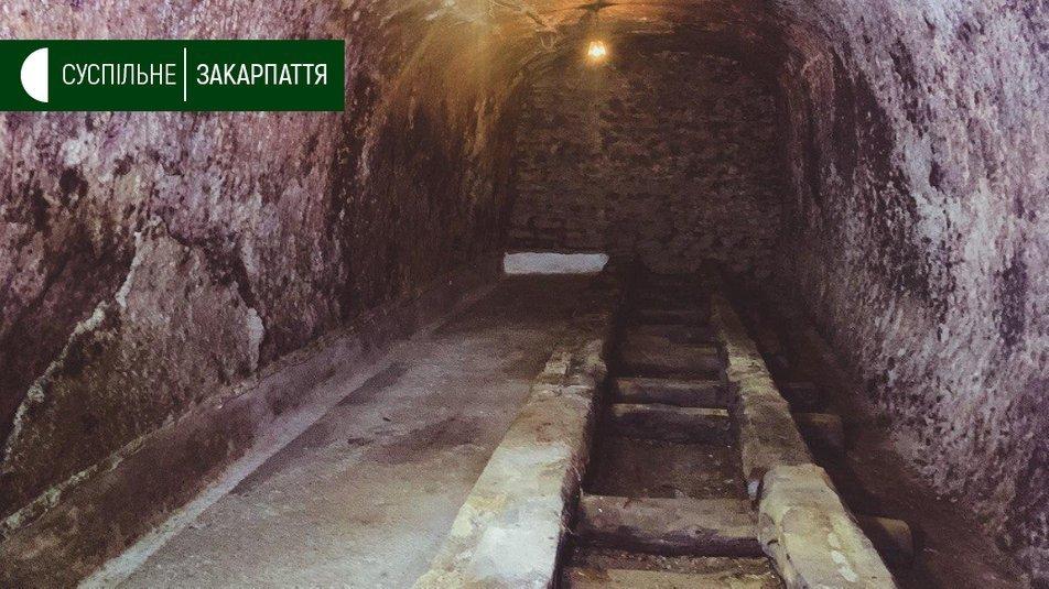 Туристів на Закарпатті водять на екскурсії у старовинні винні підвали