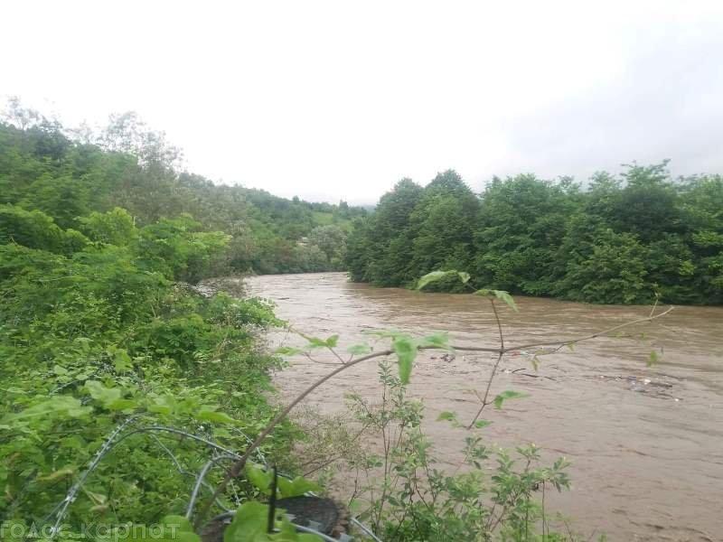 Закарпаття. Дощовий паводок несе в сусідню Румунію купу сміттєвого хламу