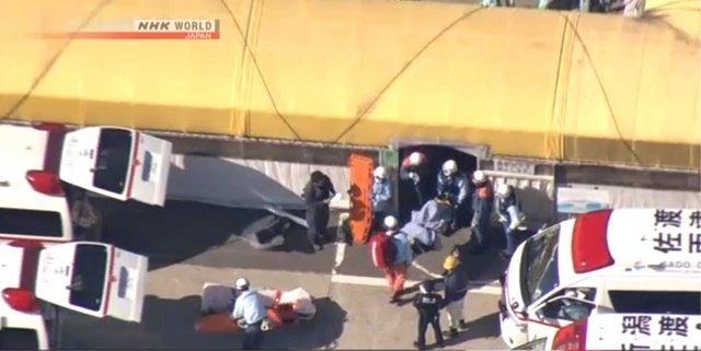 Результат столкновения катера с китом в Японском море: 87 раненых и трещина на корме