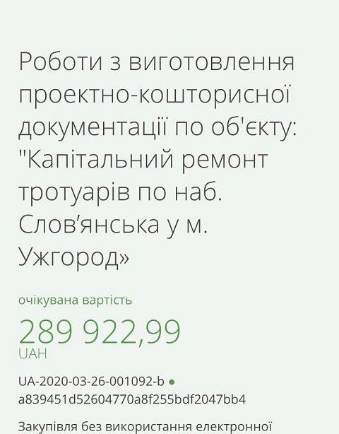 В этот раз чиновник из села Конюхов решил уничтожить любимые жителями Ужгорода платаны.
