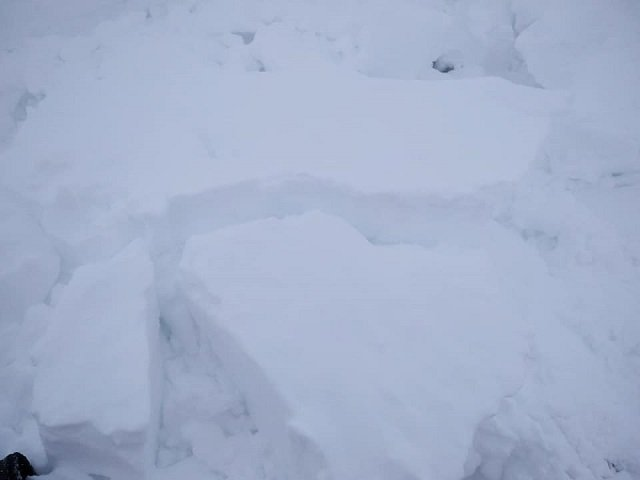 В Карпатах бушует зима со снежной метелью: В горах объявили повышенную снеголавинную опасность (