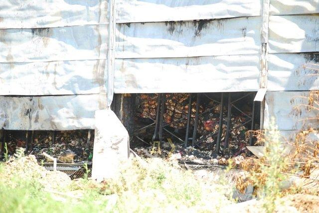 Страшный пожар под Одессой: Пылали склады, площадь ЧП 10 тыс. кв. м.