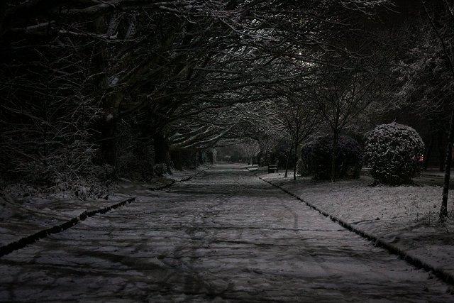 Впечатляющие фото заснеженного Ужгорода