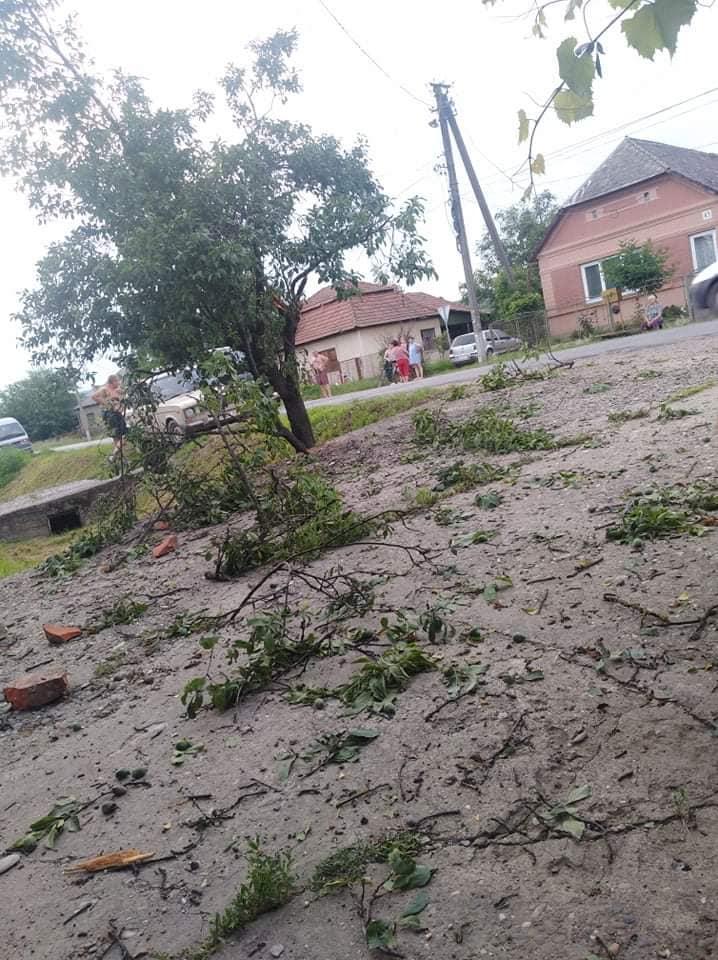 В Закарпатье водитель внедорожника слетел с дороги влетел прямиком в дерево