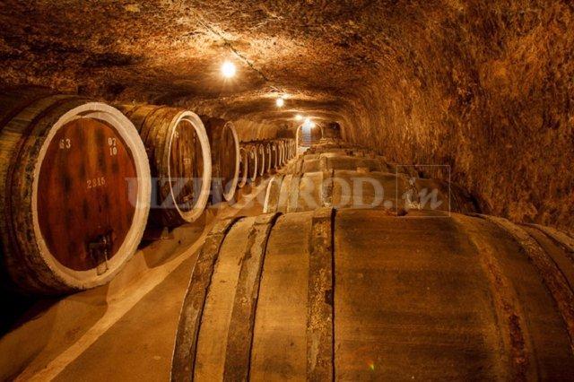 Пьянящее Закарпатье: Экскурсии с ароматом вина по середнянским подвалам