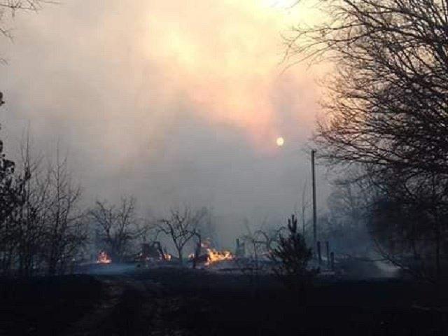 Разбушевавшийся огонь в Житомирской области уничтожает леса и села