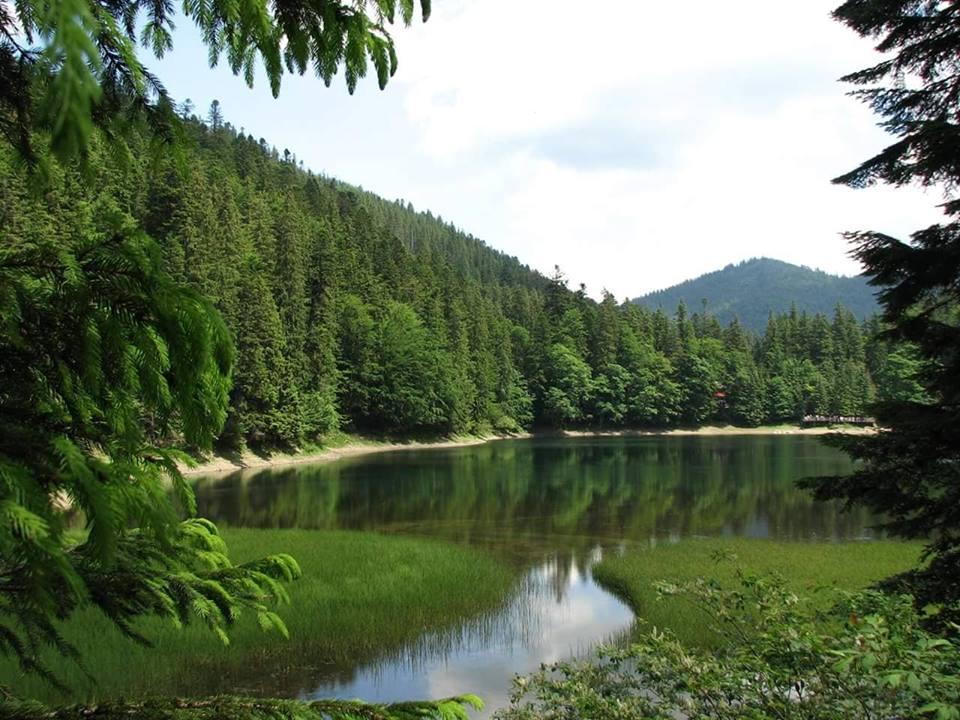 В Закарпатье составили список лучших мест, куда стоит выбраться на отдых до начала лета