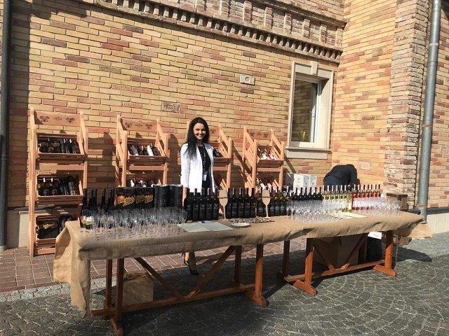 Музей винодела Чиза торжественно открыли в Берегово