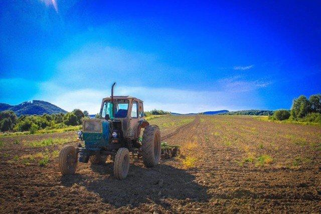 Фермеры сделали для Закарпатья новую туристическую изюминку
