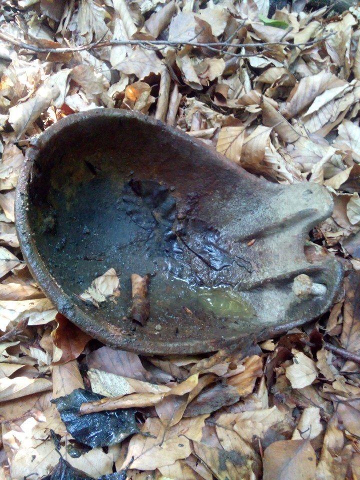В Закарпатье грибники охотятся за старинным артефактами