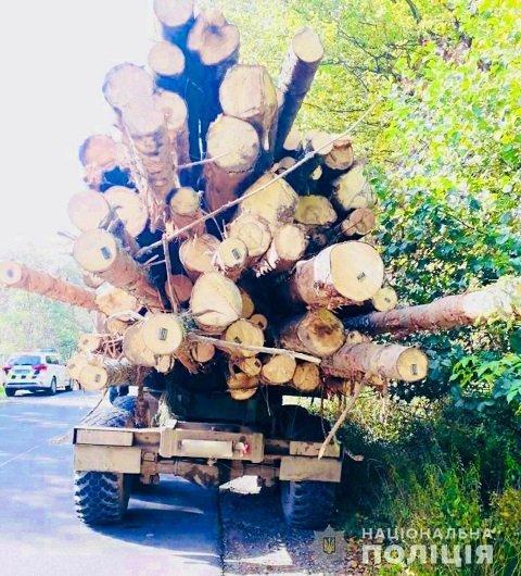 В Закарпатье полиция задержала 4 грузовика с подозрительной древесиной - село Красна