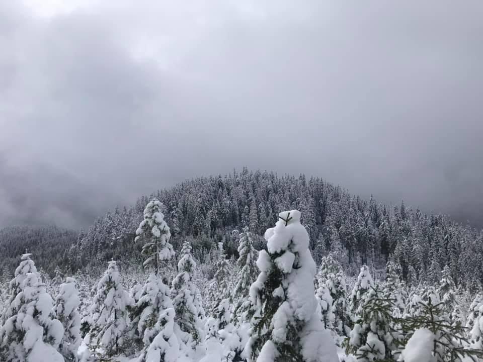 В Закарпатье зима не за горами. Зима - в горах