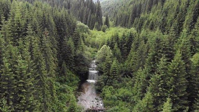 """В Карпатах начали """"освобождать"""" горные реки от старых австро-венгерских """"клявз"""""""