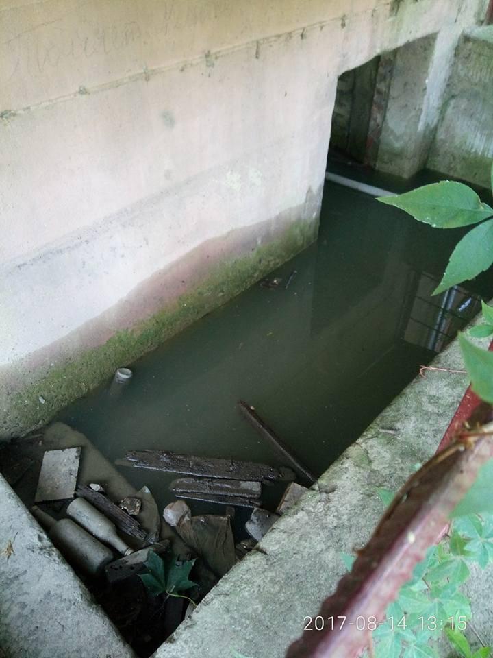 """""""Водний"""" випадок трапився на вулиці Собранецькій в Ужгороді"""