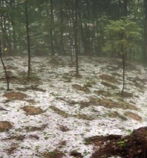 Базу отдыха в Лумшорах присыпало снегом