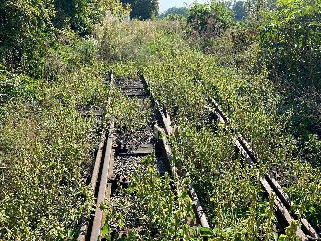 Детская железная дорога, которая стоит уже 1,5 года возобновит работу