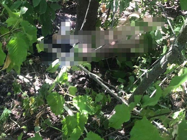 Трагедия под Киевом: 15-летний подросток убил 12-летнюю девочку из-за отказа в сексе