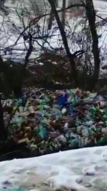 В Закарпатье реки сейчас напоминают большие мусоропроводы