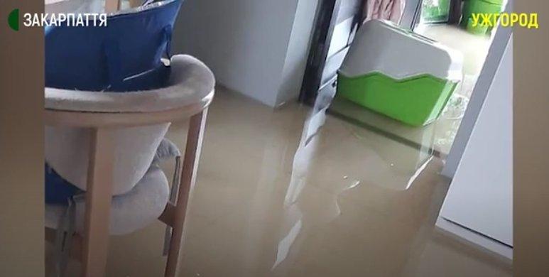 Сім вулиць разом із будівлями опинилися у воді в Ужгороді