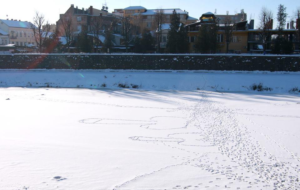 Лік Путіна явився посеред річки в центрі міста Ужгород!