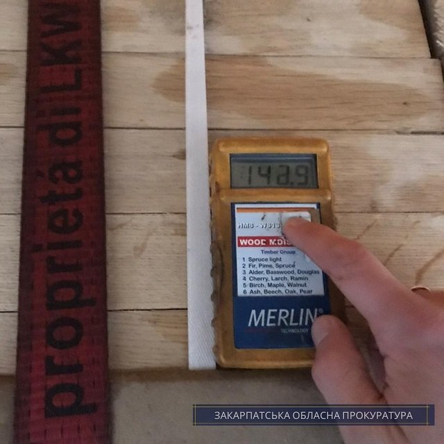 В Закарпатье предпринимателя поймали на контрабанде ценной древесины в Евросоюз