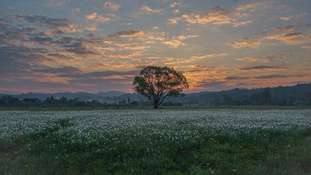 Фотографу удалось запечатлеть восход солнца в Долине: