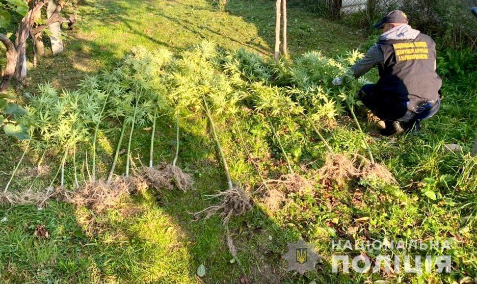 В Закарпатье прикрыли домашний бизнес местного жителя