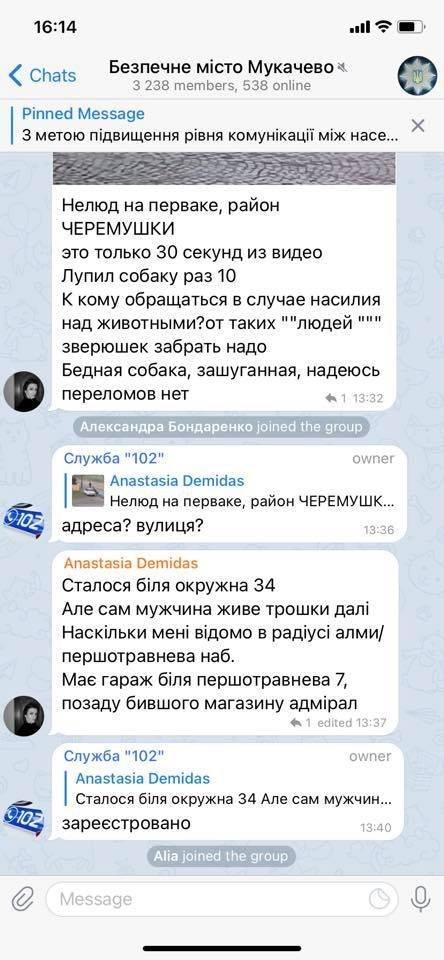 Соцсети охватил гнев после кошмарного видео из Мукачево