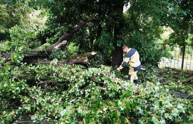 Неконтролируемый ураган перевернул Ужгород с ног на голову