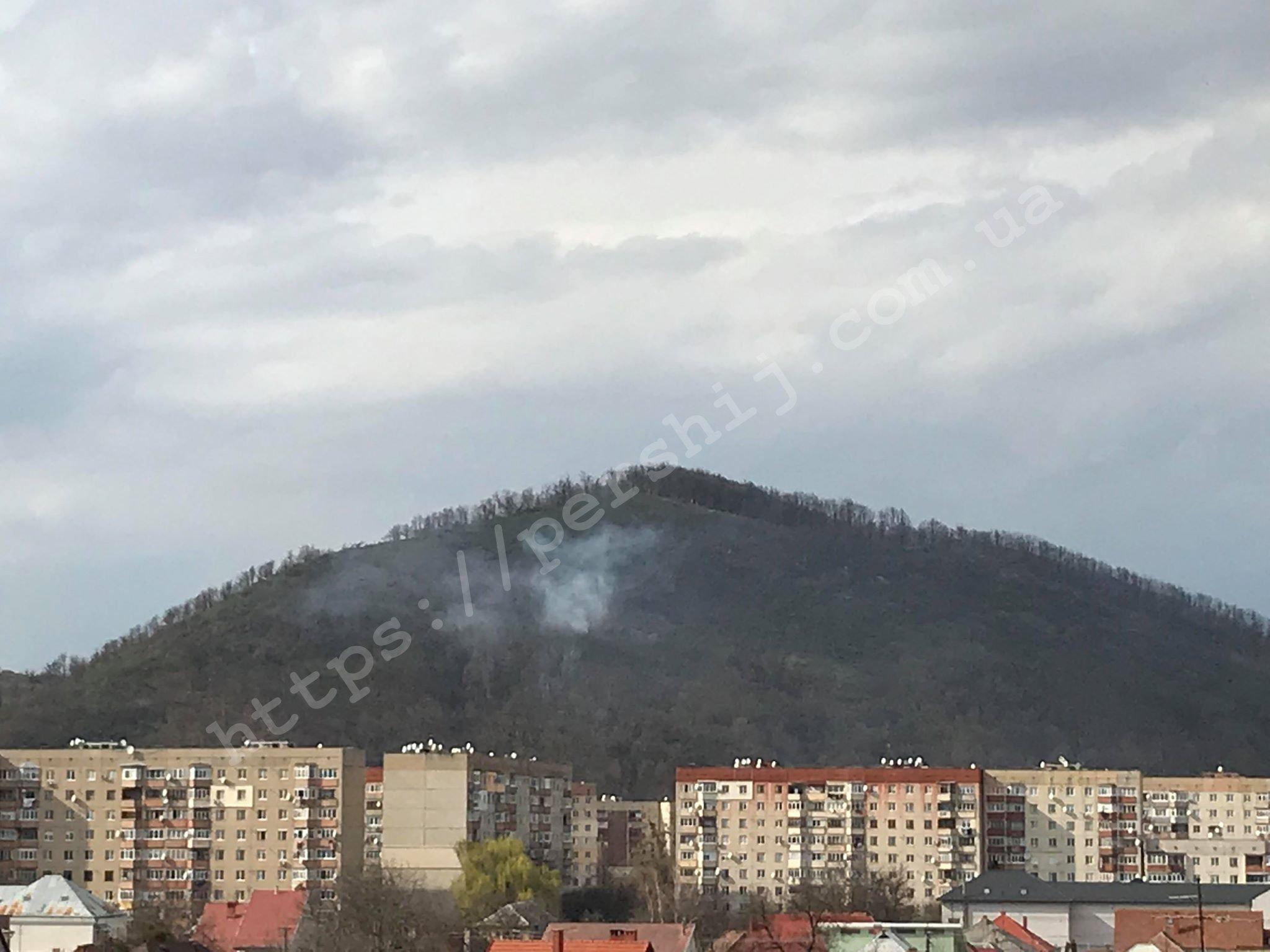 В Закарпатье уже сутки горит подножие известное горы