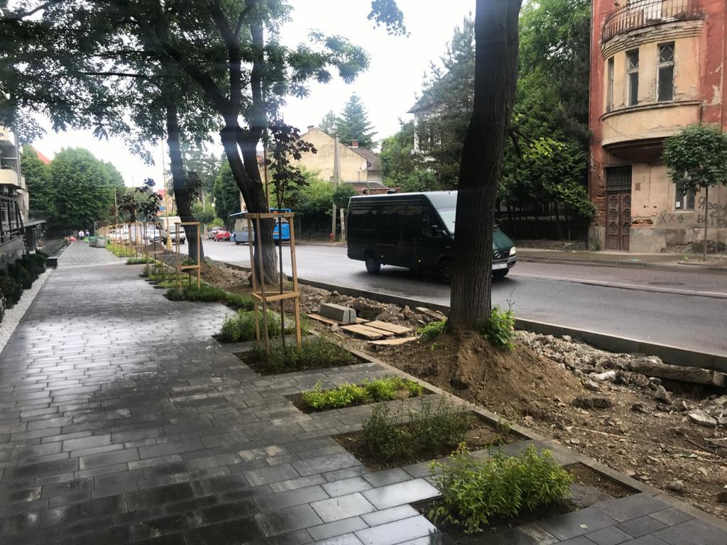 В Ужгороде под носов у депутатов совершили акт уничтожения уникальной зоны