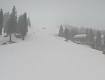 В Закарпатье популярный курорт среди весны завалило снегом