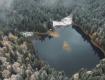 """Білі мухи """"атакували"""" Синевирське озеро"""