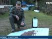 У горах Закарпаття розгорнулася операція з порятунку кедрових сосен